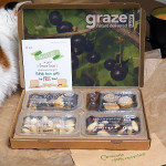 Graze: Introduction & Box #1
